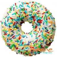COLOR SPRINKLES DONUT